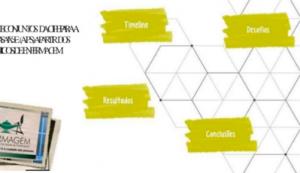 A construção dos subconjuntos da CIPE para a Atenção Primária à Saúde (APS) a partir dos protocolos clínicos de enfermagem